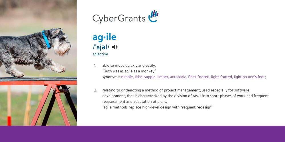 CG-agile-definition-Social-Image Copy